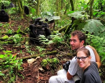 3 Days visiting Rwanda gorillas to Volcanoes national park plus a cultural tour