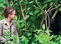 3 Days gorilla trek